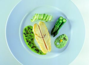 Turbot Argenteuil with Asparagus